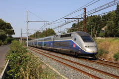 SNCF TGV 806 310212, Gallargues (michaelgoll777) Tags: sncf tgv