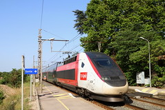 SNCF TGV 4726 310051 Lyria France - Suisse, Gallargues (michaelgoll777) Tags: sncf tgv lyria