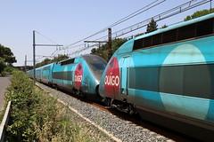 SNCF TGV 764 und TGV 774 Ouigo, Gallargues (michaelgoll777) Tags: sncf tgv ouigo
