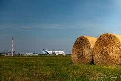 Hay bales beluga roll (George Nevrela) Tags: beluga cargo fracht airbus bremen flughafen hay haybales heuballen airport flugzeug nevrela frachtmaschine landing takeoff