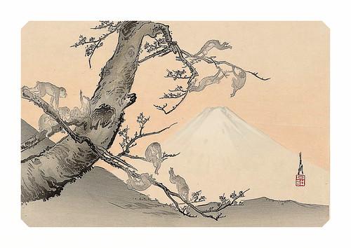 14-Affiche // A3 // Singes Fuji