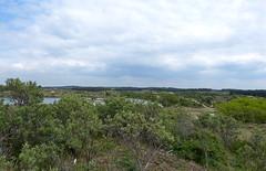 Nationaal Park Zuid-Kennemerland with view at Vogelmeer/Bird lake (joeke pieters) Tags: 1470613 panasonicdmcfz150 kennemerduinen nationaalpark zuidkennemerland noordholland nederland netherlands holland nswandeling santpoortnoordoverveen duinen dunes landschap landscape landschaft paysage