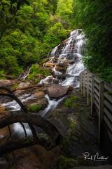 Glen Falls (Reid Northrup) Tags: rrs nature forest glenfalls highlands longexposure nikon northcarolina reidnorthrup river rocks scenic stream trees water waterfall
