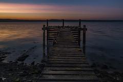 Perfect Summer evening (Edgaras Borotinskas) Tags: canon6d canontse24mmf35lii water sunset sky scotland coast landscape seaside outdoor firthofforth bridge