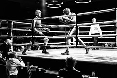 Detonation Boxing 14 - Ringside (Leighton Wallis) Tags: sony alpha a7r mirrorless ilce7r 55mm f18 1635mm f40 newcastle nex nsw newsouthwales australia newcastleworkersclub boxing fight ring round jones steelcityboxing