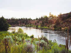 Bend, Oregon (dan tsai) Tags: olympusomdem5 olympus oregon bend river nature sunset landscape em5 omd lumixg20f17