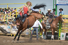 Strathmore Stampede 2018 (tallhuskymike) Tags: strathmorestampede event rodeo cowboy horse horses action western 2018 prorodeo outdoors alberta strathmore