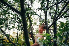 The perch (Elizabeth Sallee Bauer) Tags: nature active appletree backyard beautyinnature blossom boy child childhood climbing evening exploring family fresh fun garden gardening green growing happiness kid nonurbanscene oneboyonly outdoors outside playing spring tree trees weather youth