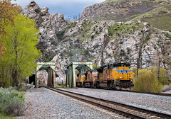 Taggart (Wheelnrail) Tags: up union pacific train trains overland route evanston subdivision taggart taggarts tunnel bridge manifest canyon devils slide rocks rural utah ut emd sd70ace