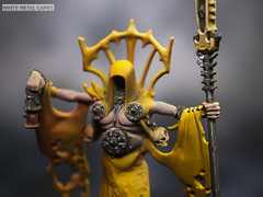 Hastur King in Yellow (whitemetalgames.com) Tags: whitemetalgames wmg white metal games painting painted paint commission commissions service services svc raleigh knightdale northcarolina north carolina nc hobby hobbyist hobbies mini miniature minis miniatures tabletop rpg roleplayinggame rng warmongers wargamer warmonger wargamers tabletopwargaming tabletoprpg hastur king yellow cthulhu avatar great old one