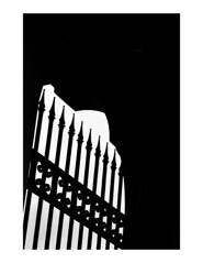 (Brendan | Toews) Tags: leica leicam7 90mm leica90mmf4elmarc kodak trix400 bw blackandwhite film grain architecture vancouver