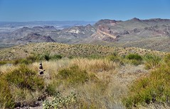 A Cairn and a View to Burro Mesa and the Big Bend National Park Landscape