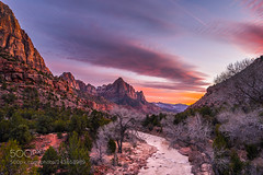 Picture Perfect (Dr. Ernst Strasser) Tags: ifttt 500px sunset zion national park watchman usa travel utah ernst strasser unternehmen startups entrepreneurs unternehmertum strategie investment shareholding mergers acquisitions transaktionen fusionen unternehmenskäufe fremdfinanzierte übernahmen outsourcing unternehmenskooperationen unternehmensberater corporate finance strategic management betriebsübergabe betriebsnachfolge