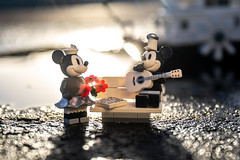 Mickey & Minnie (Ballou34) Tags: 2019 7dmark2 7dmarkii 7d2 7dii afol ballou34 canon canon7dmarkii canon7dii eos eos7dmarkii eos7d2 eos7dii flickr lego legographer legography minifigures photography stuckinplastic toy toyphotography toys stuck in plastic mickey minnie flowers bench guitar steamboat willie sun sunrise