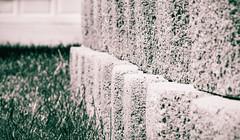 Day 586 | Fulfillment (JL2.8) Tags: boise idaho unitedstatesofamerica canon 6dmk2 project365 365 photochallenge wall brick