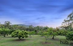 7 Turpentine Crescent, Wauchope NSW