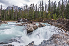 Kicking Horse River  D85_4892.jpg (Mobile Lynn) Tags: water rock mountain landscape waterfall river forest landscapephotography outdoorphotography columbiashuswapa britishcolumbia canada