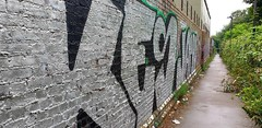 """""""A Happy Crappy Alley"""" (standhisround) Tags: graffiti wall alleyway shrubs path footpath painting northwestlondon london uk england building"""