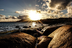 sunset on the rocks (Paul wrights reserved) Tags: sunset sun sunlight sunburst sunsets landscape landscapes landscapephotography seagull seascape seascapes