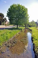 35798 (benbobjr) Tags: lincoln lincolnshire midlands eastmidlands england english uk unitedkingdom gb greatbritain britain british metheringham northkesteven fens fenland thefens meg metheringhamfen scopwick kirkbygreen scopwickbeck beck stream river creek watercourse bridge