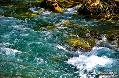 The waters of Lousios river. (Elias Chris) Tags: lousios lousiosriver river waters nature arcadia gortynia gortyniaarcadia αρκαδία greece ελλάδα
