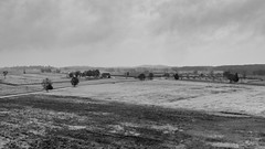 Peach Orchard and Plum Run - BW (rschnaible) Tags: gettysburg pennsylvania national park military history historic outdoor landscape peach orchard bw blackandwhitephotography monotone us