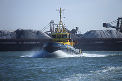 iShoot_HvH_Juni19_Fastfery-10 (gabrielgs) Tags: hoekvanholland fastferry haven schepen pilot tugboat sleepboot stenaline scheepvaart waterweg zeehonden 2019