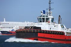 iShoot_HvH_Juni19_Fastfery-14 (gabrielgs) Tags: hoekvanholland fastferry haven schepen pilot tugboat sleepboot stenaline scheepvaart waterweg zeehonden 2019