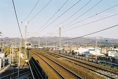 Escaping from the sun (しまむー) Tags: pentax mz3 fa 43mm f19 limited kodak gold 200 弘前城 桜祭り