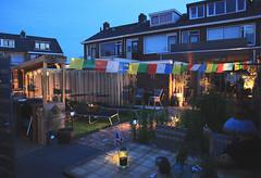 Cordesstraat Tuin Juni2019-15 (gabrielgs) Tags: cordesstraat hoekvanholland home tuin thuis garden buitenkeuken zomer 2019 gabrielschoutendejel esther