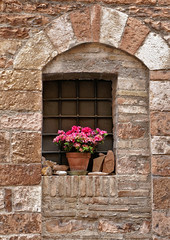 Umbria: Spello, flowers in a window (Henk Binnendijk) Tags: spello umbria umbrië umbrie italy italia italië street wall house