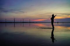 夕遊高美 (hosihane) Tags: 台灣 台中市清水區 高美 濕地 風力發電 水花 人 剪影 夕陽 日落 sony a7m3 a7iii 保護區 silhouette