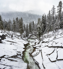 Clover Creek in Spring Snow (CanonDLee) Tags: california clover clovercreek creek fog forest lines mist national nationalpark nature park rapids river rocks sequoia snow snowing southernhemisphere torrent tree trees valley water