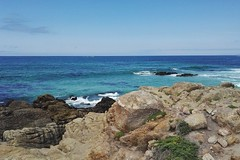 17-Mile-Drive, California (Tiina Johanna) Tags: asilomar pacificgrove monterey carmel pebblebeach 17miledrive california usa beach whitesand pacificocean kalifornia