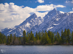 The Tetons Over Jackson Lake (RobertCross1 (off and on)) Tags: 40150mmf456mzuiko em5mkii grandteton grandtetonnationalpark jacksonhole mountainwest omd olympus rockymountains tetons wy wyoming bluesky clouds forest lake landscape mountains snow trees water