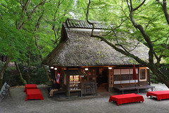 奈良公園・水谷茶屋 ∣ Mizutani Tea Shop・Nara Park (Iyhon Chiu) Tags: 日本 奈良 nara japan japanese 水谷茶屋 茶屋 小屋 公園 紅葉 緑葉 葉 自然 house park summer leaf leaves nature tree