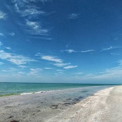This mornings beach walk. Although there are others here, you can easily go long stretches early in the morning and not see more than a handful of people. So extremely different than the beaches in summer at home, or the larger Florida cities.. This, I'm (Sivyaleah (Elora)) Tags: sanibel florida island vacation june 2019 beach moment lens wide angle shelling blue skies
