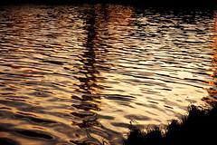water (Darek Drapala) Tags: warsaw warszawa water waterscape reflection reflects sun silhouette sunset evening vistula panasonic poland polska panasonicg5 lumix light nature