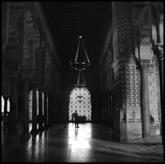 Between light and dark (irgendwiejuna) Tags: مسجد mezquita córdoba spain europe analogue hasselblad hasselblad500cm ilfordfilm ilford ilfordhp5 hp5 mediumformat 6x6 square shootfilm architecture blackandwhite history