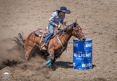 Rounding the Barrel (allentimothy1947) Tags: califonia sonomacounty time arena barrelracing cattle competition cowgirl dirt horse rider russianriverrodeo mills saddle sonoma county barrel racing birdle boots hat jeans mane riding rope russian river rodeo sturrups tail duncans