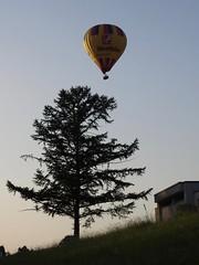 hot air ballon at sunset HB-QOU Kubicek Westfalen Switzerland (roli_b) Tags: hot air balloon ballon heissluft heiss luft sunset abend evening night abendstimmung sonnenuntergang hbqou hb qou kuicek kubicek westfalen gas switzerland schweiz suisse suiza svizzera 2019 noche