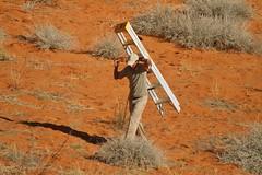 Willem... les lions ont tout cassé !  réparations/repairs (safrounet) Tags: ktpcamps kieliekrankie kgalagadi southafrica afriquedusud semiarride semiarrid sand sable waterhole pointdeau
