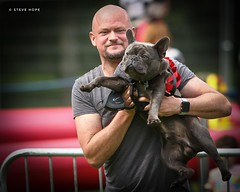 Barton Cruftz 2019, Barton upon Humber (SteveH1972) Tags: dog cute dogshow show bartonuponhumber barton bartoncruftz bartoncarnival human man men people person portrait northlincolnshire lincolnshire uk britain outside outdoor outdoors 2019 canon700d 700d canon70200 70200 england frenchbulldog