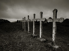 Eternal Memory (Maximilian Busl) Tags: blackandwhite crosses cemetry church faroe contemplation melancholy phaseone