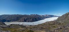 Narsarsuaq glacier (802701) Tags: 2019 201906 43 em1 em1markii em1mkii greenland grønland june june2019 kalaallitnunaat kommunekujalleq kujalleq mft micro43 narsarsuaq northamerica omd omdem1 olympus olympusomdem1 olympusomdem1mkii fourthirds island microfourthirds mirrorless photography travel travelling
