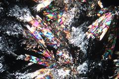 Lactose fond noir (b.dussard25) Tags: microphotographie abstract abstrait canon art macrophotographie macrophotography microphotography lactose visualart