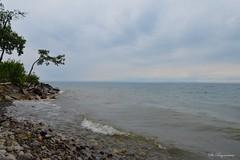Stormy Cloudy Shore (Bo Ragnarsson) Tags: cloudy cloudysky cloudyday storm stormy shore shoreline coast vättern lake foggy water girabäcken gränna uppgränna boragnarsson