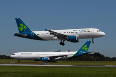 New Shamrock livery (eigjb) Tags: dublin airport eidw ireland international collinstown jet airliner transport aviation aircraft airplane plane spotting aeroplane 2019 eicvb airbus aer lingus eiedy a320 a330 new livery