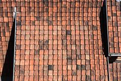 Hercynian roof (rooibusch) Tags: deutschland germany harz quedlinburg sachsenanhalt