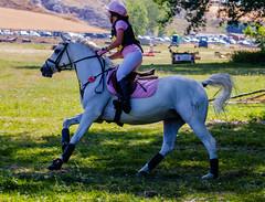 Campeonato de España Ponis D (Kike Piris Niño) Tags: cceventing horse hípica cross jumping jumpinghorse deporte caballo hipismo saltocaballos cce accion eventing